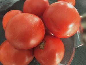organic NJ garden tomatoes